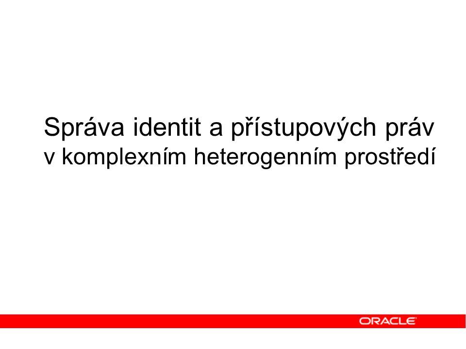 Správa identit a přístupových práv v komplexním heterogenním prostředí
