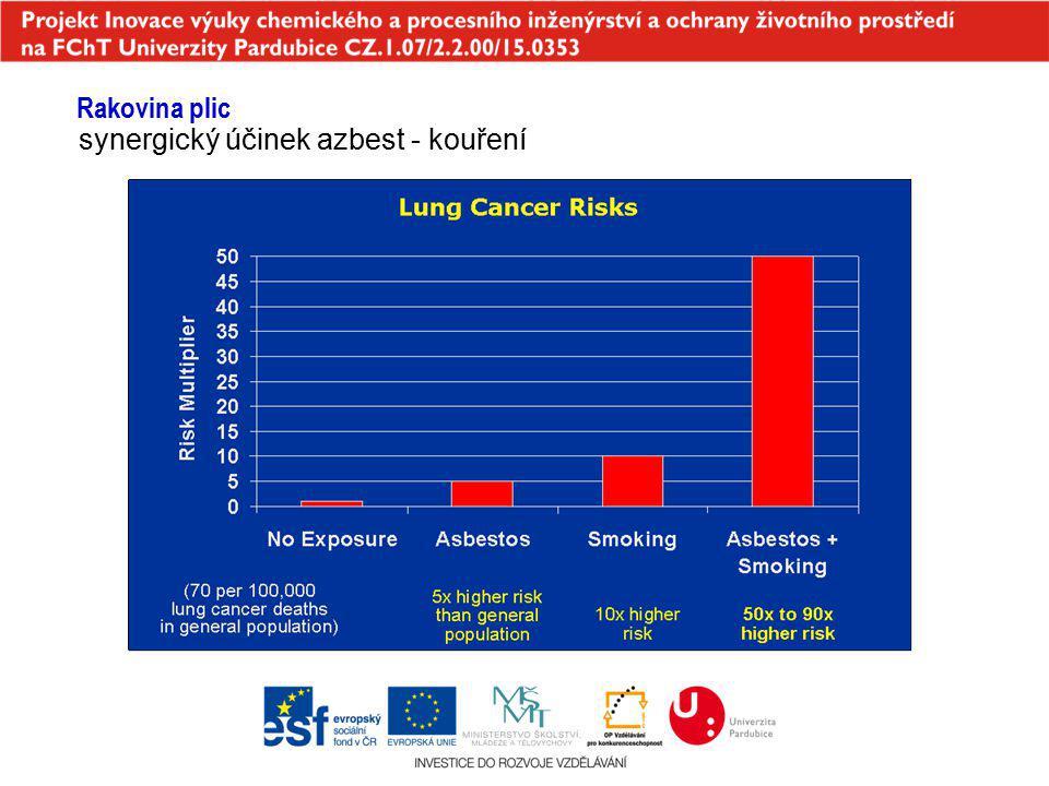 Rakovina plic synergický účinek azbest - kouření