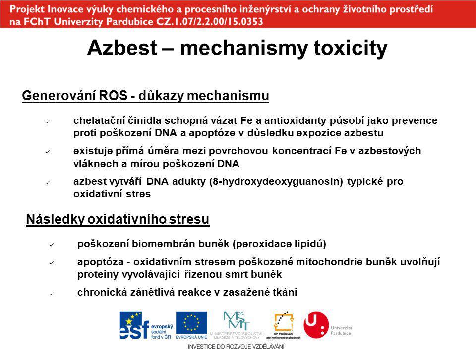 Azbest – mechanismy toxicity