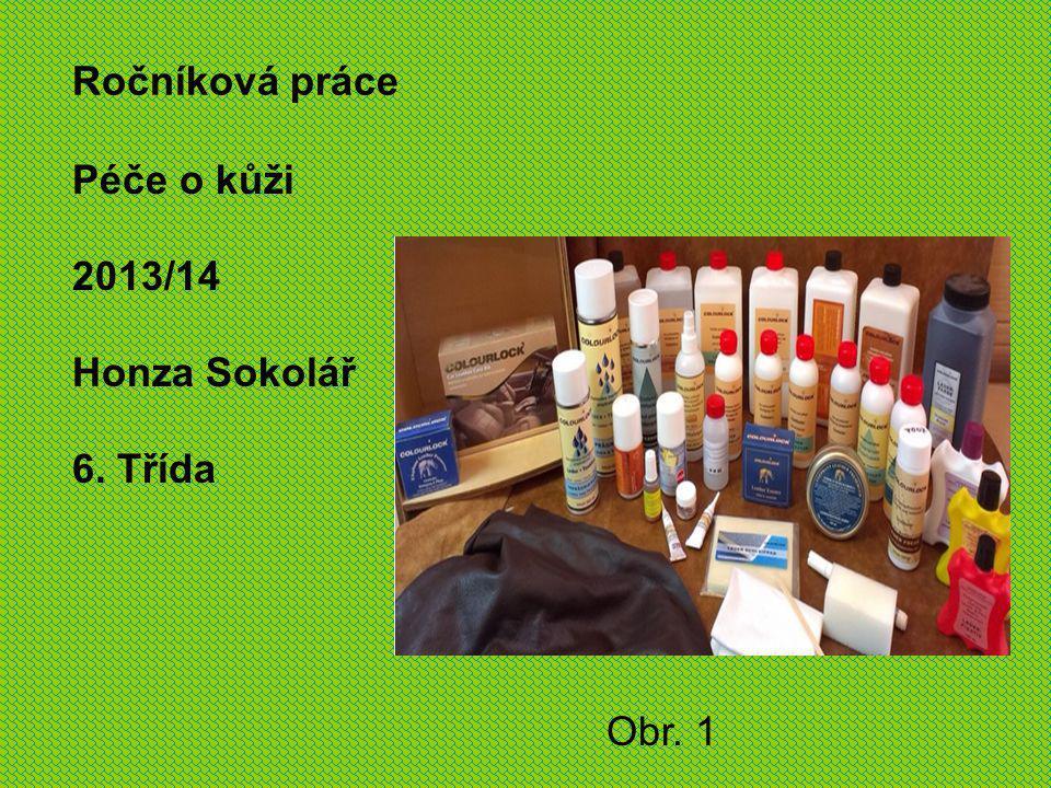 Ročníková práce Péče o kůži 2013/14 Honza Sokolář 6. Třída Obr. 1