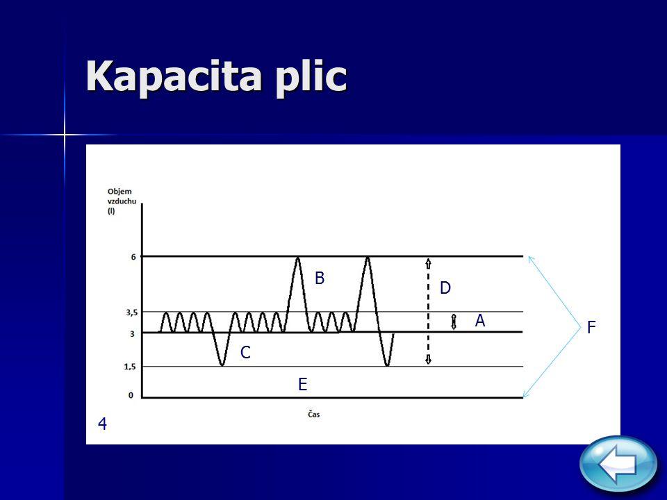 Kapacita plic B D A F C E 4