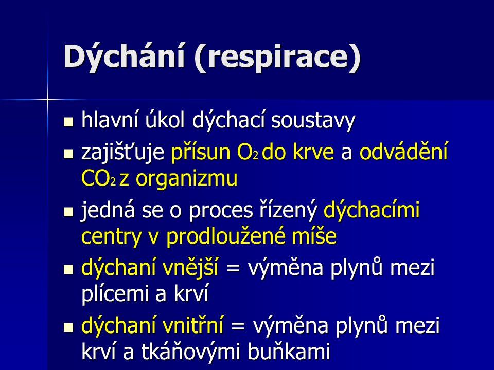 Dýchání (respirace) hlavní úkol dýchací soustavy