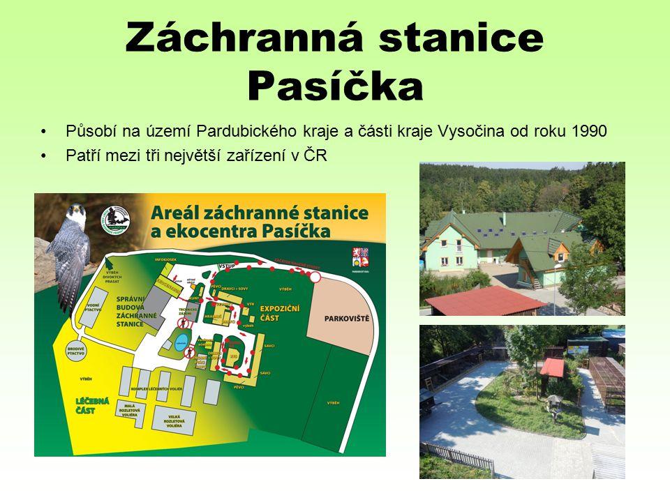 Záchranná stanice Pasíčka