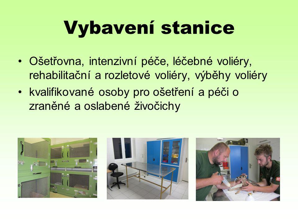 Vybavení stanice Ošetřovna, intenzivní péče, léčebné voliéry, rehabilitační a rozletové voliéry, výběhy voliéry.