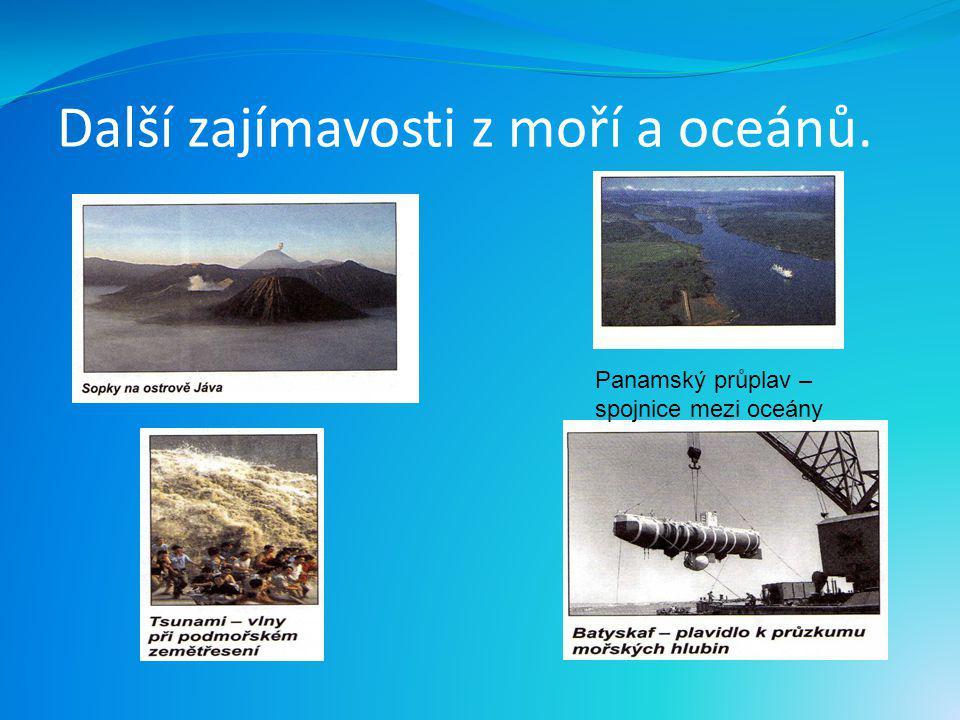 Další zajímavosti z moří a oceánů.