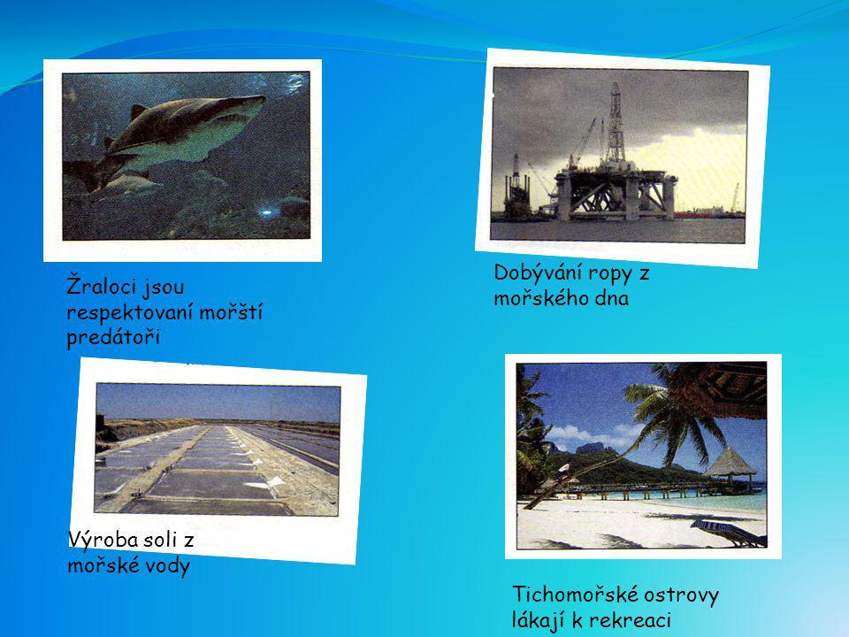 Dobývání ropy z mořského dna