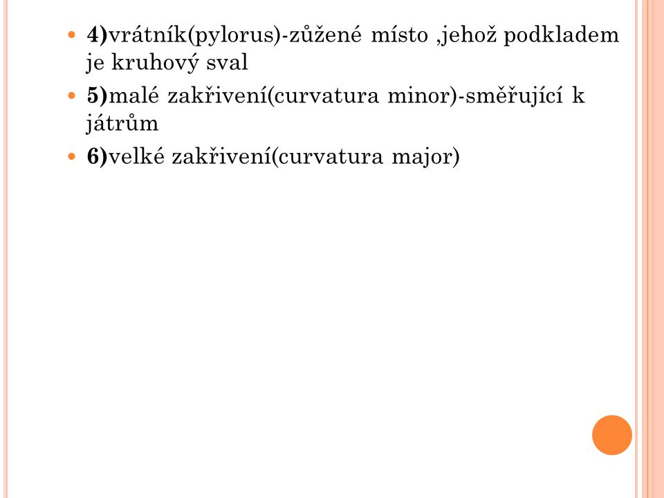 4)vrátník(pylorus)-zůžené místo ,jehož podkladem je kruhový sval
