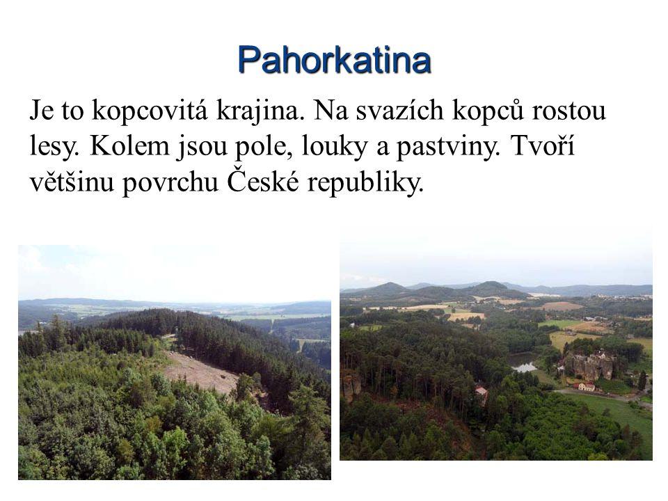 Pahorkatina Je to kopcovitá krajina. Na svazích kopců rostou lesy.