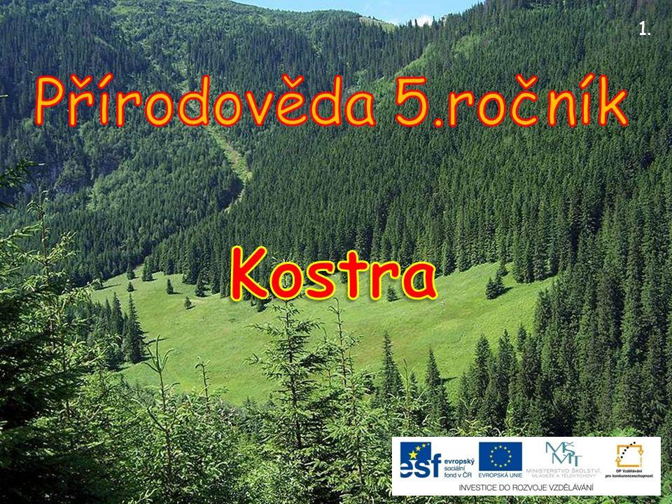 1. Přírodověda 5.ročník Kostra
