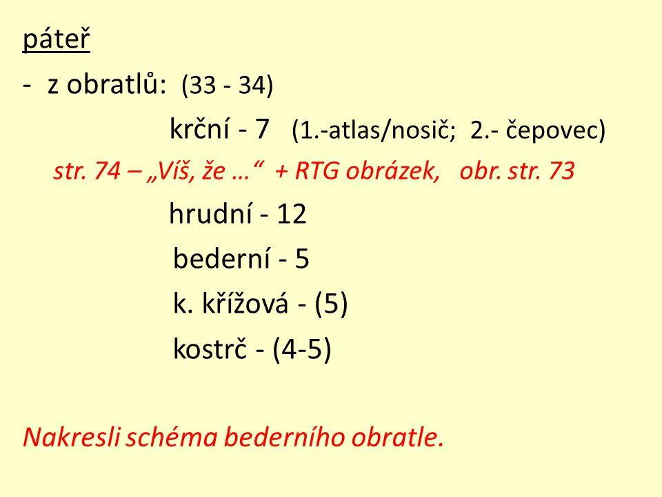 krční - 7 (1.-atlas/nosič; 2.- čepovec) hrudní - 12 bederní - 5