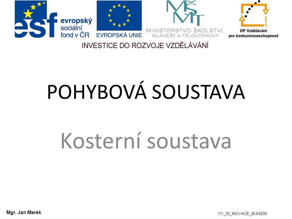 Kosterní soustava POHYBOVÁ SOUSTAVA Mgr. Jan Marek