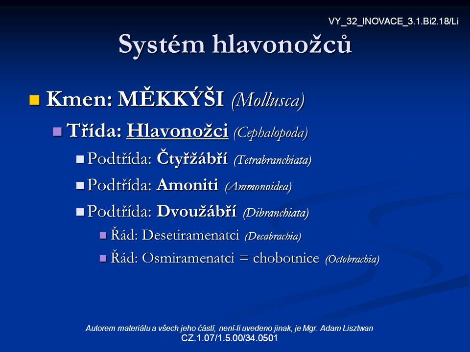 Systém hlavonožců Kmen: MĚKKÝŠI (Mollusca)