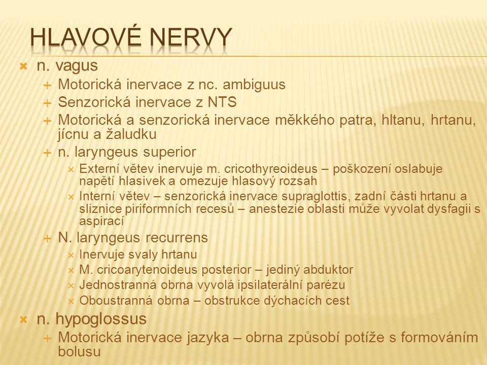 Hlavové nervy n. vagus n. hypoglossus