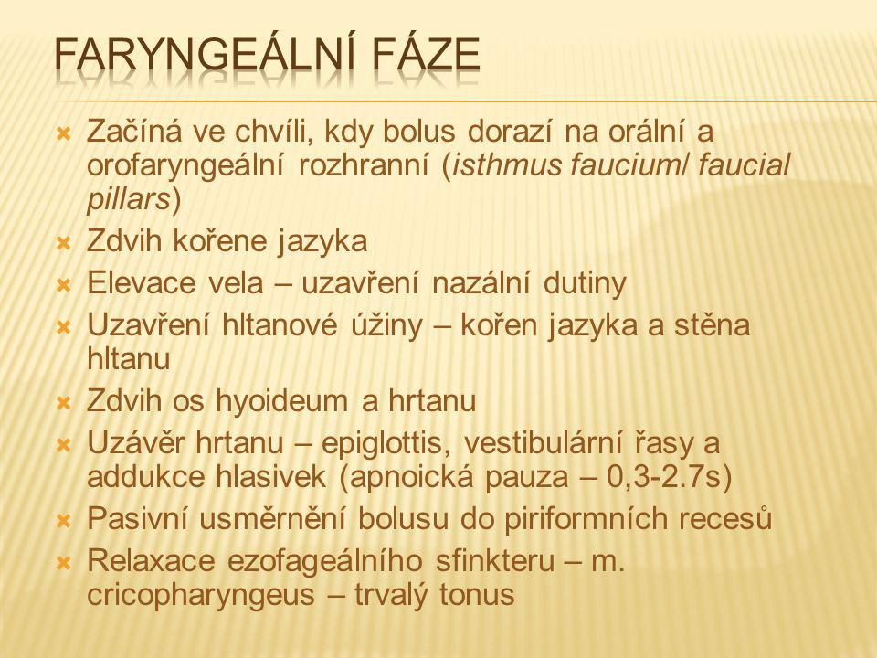 Faryngeální fáze Začíná ve chvíli, kdy bolus dorazí na orální a orofaryngeální rozhranní (isthmus faucium/ faucial pillars)