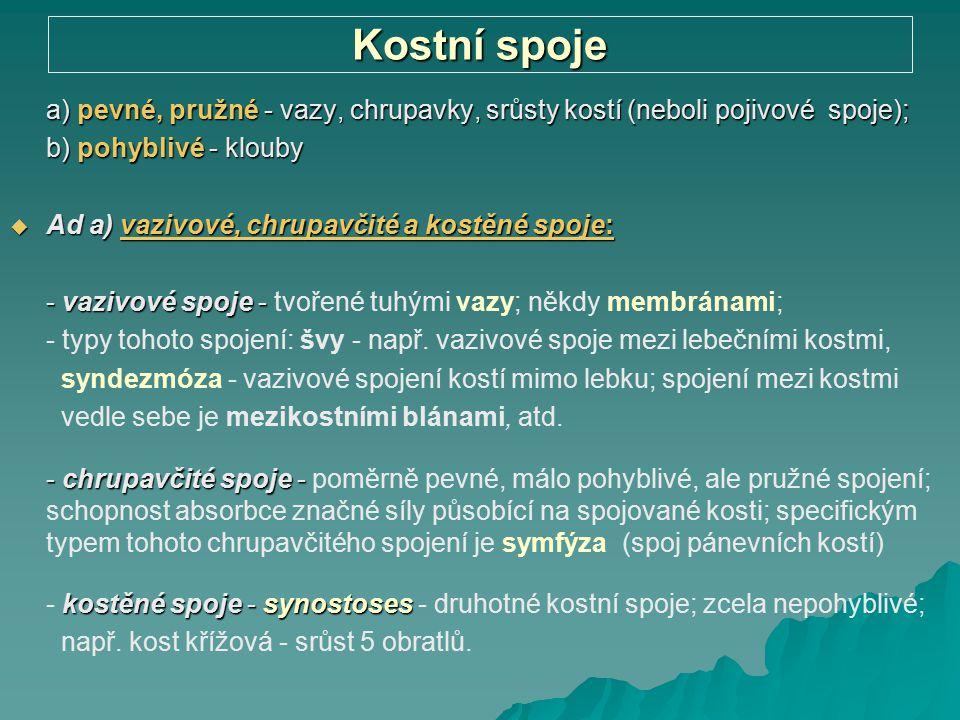 Kostní spoje a) pevné, pružné - vazy, chrupavky, srůsty kostí (neboli pojivové spoje); b) pohyblivé - klouby.
