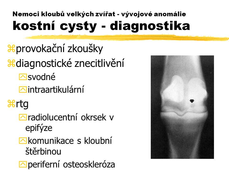 diagnostické znecitlivění