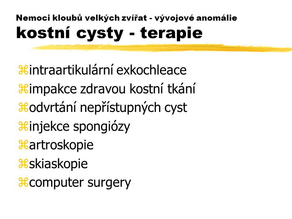 intraartikulární exkochleace impakce zdravou kostní tkání