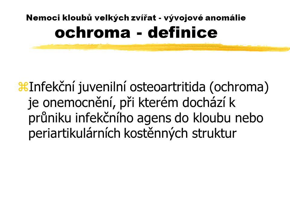 Nemoci kloubů velkých zvířat - vývojové anomálie ochroma - definice