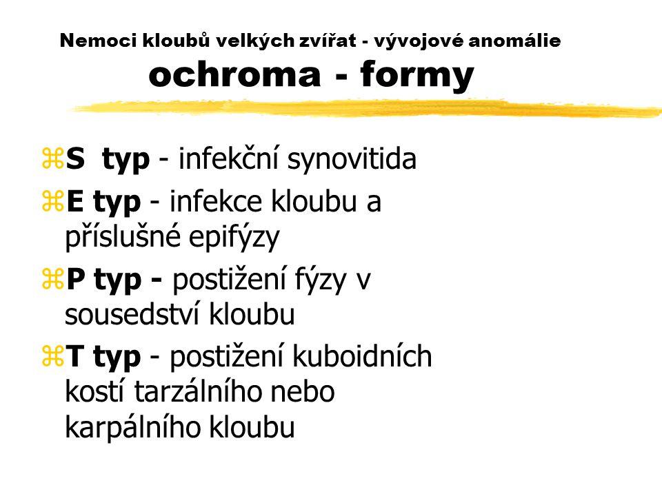 Nemoci kloubů velkých zvířat - vývojové anomálie ochroma - formy