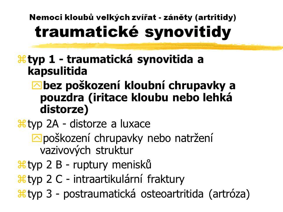 typ 1 - traumatická synovitida a kapsulitida