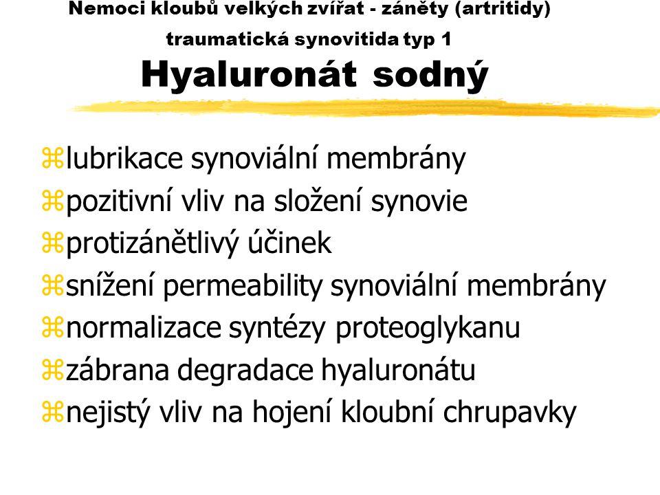 lubrikace synoviální membrány pozitivní vliv na složení synovie