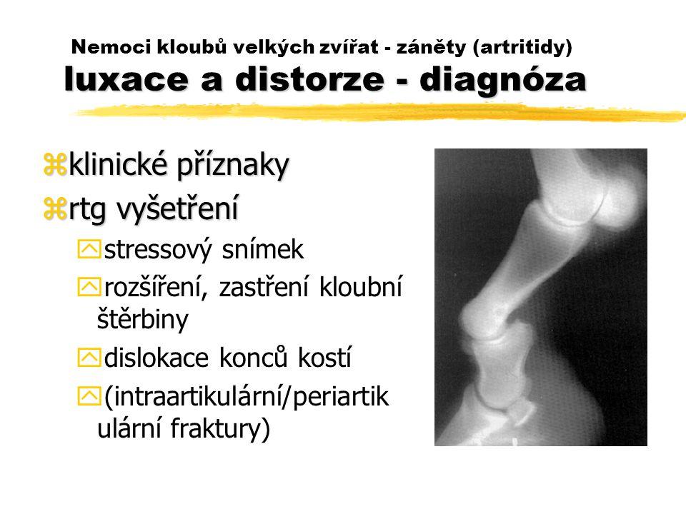 klinické příznaky rtg vyšetření stressový snímek