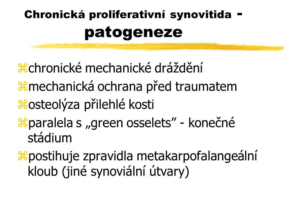 Chronická proliferativní synovitida - patogeneze
