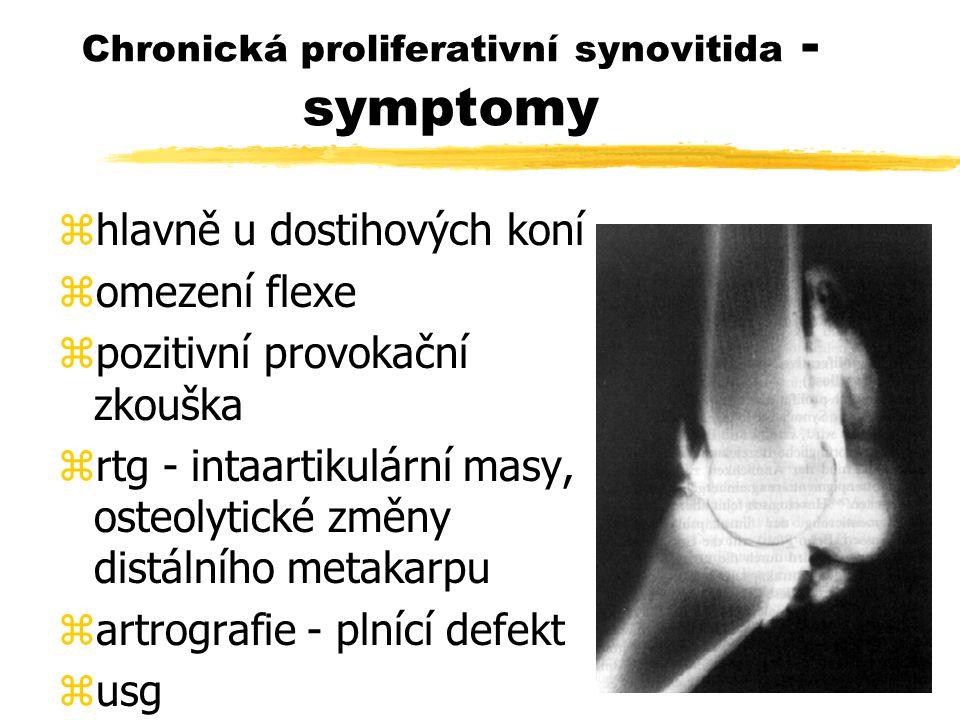 Chronická proliferativní synovitida - symptomy