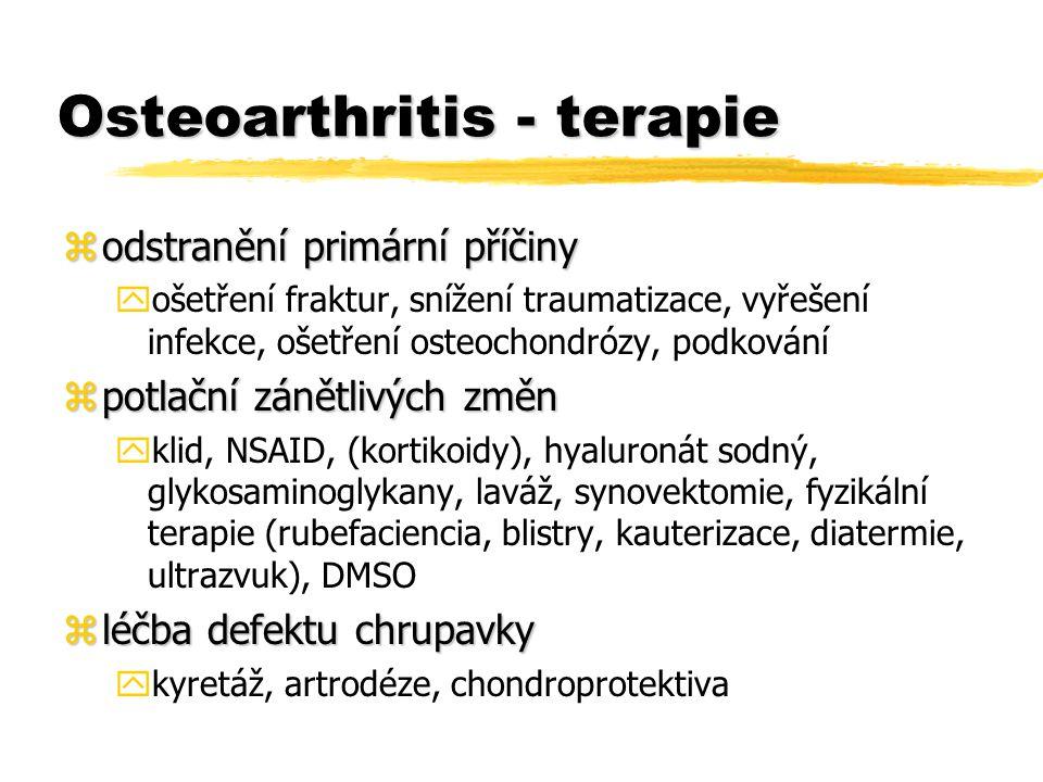 Osteoarthritis - terapie