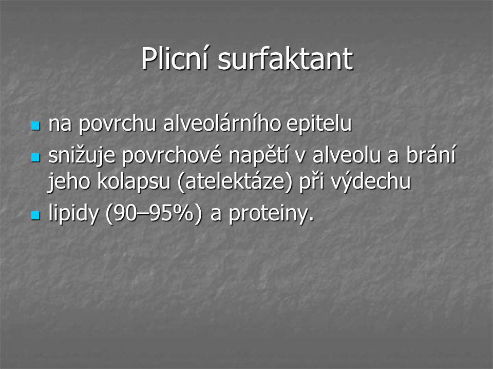 Plicní surfaktant na povrchu alveolárního epitelu