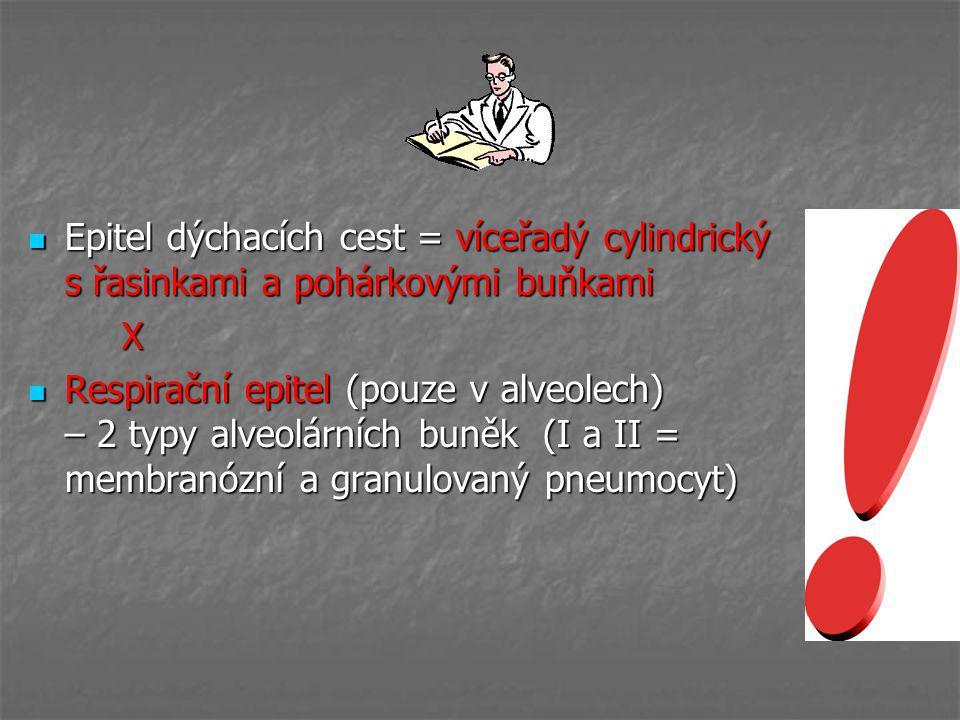 Epitel dýchacích cest = víceřadý cylindrický s řasinkami a pohárkovými buňkami