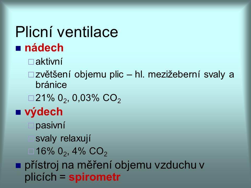 Plicní ventilace nádech výdech