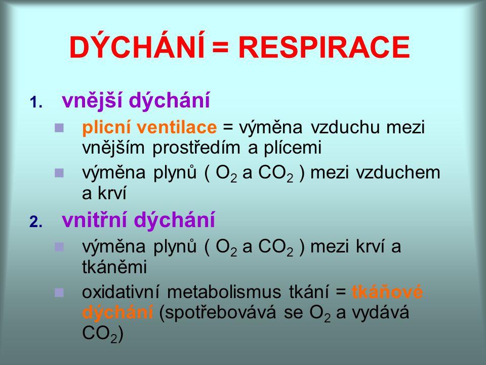 DÝCHÁNÍ = RESPIRACE vnější dýchání vnitřní dýchání