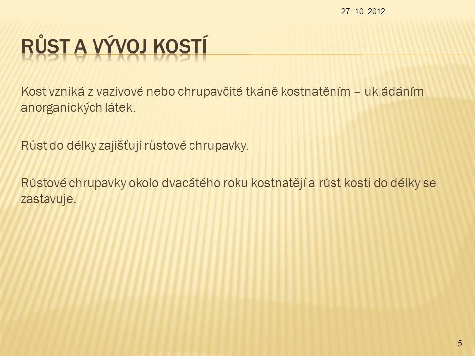 27. 10. 2012 Růst a vývoj kostí.