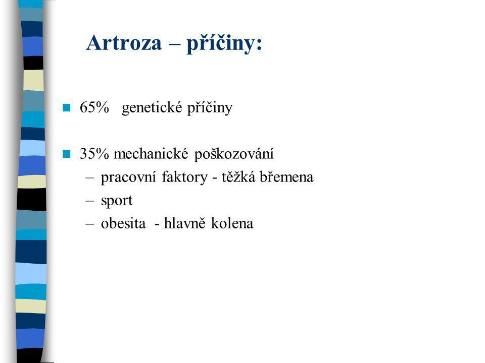 Artroza – příčiny: 65% genetické příčiny 35% mechanické poškozování