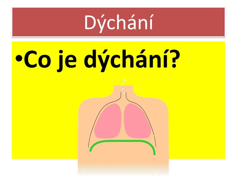 Dýchání Co je dýchání 10 minut opakování