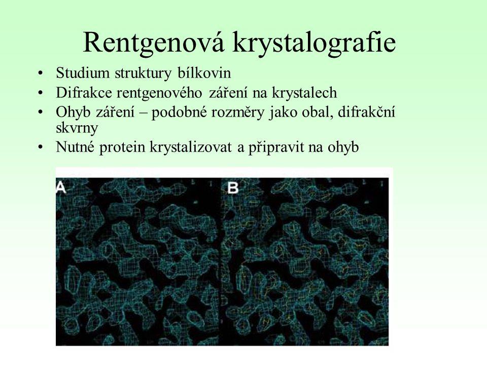 Rentgenová krystalografie