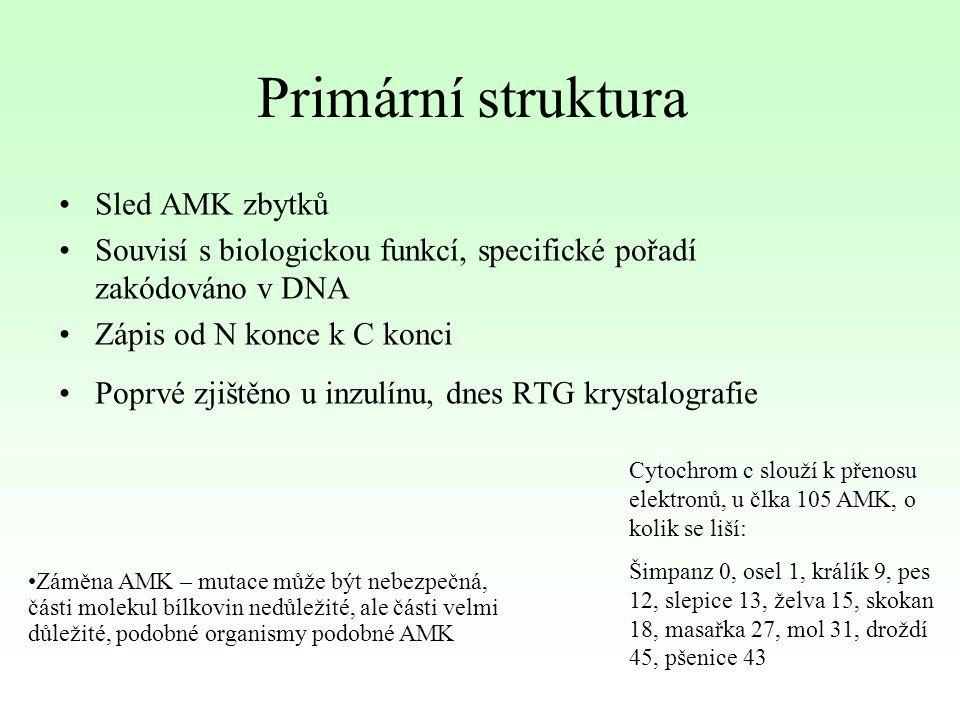Primární struktura Sled AMK zbytků