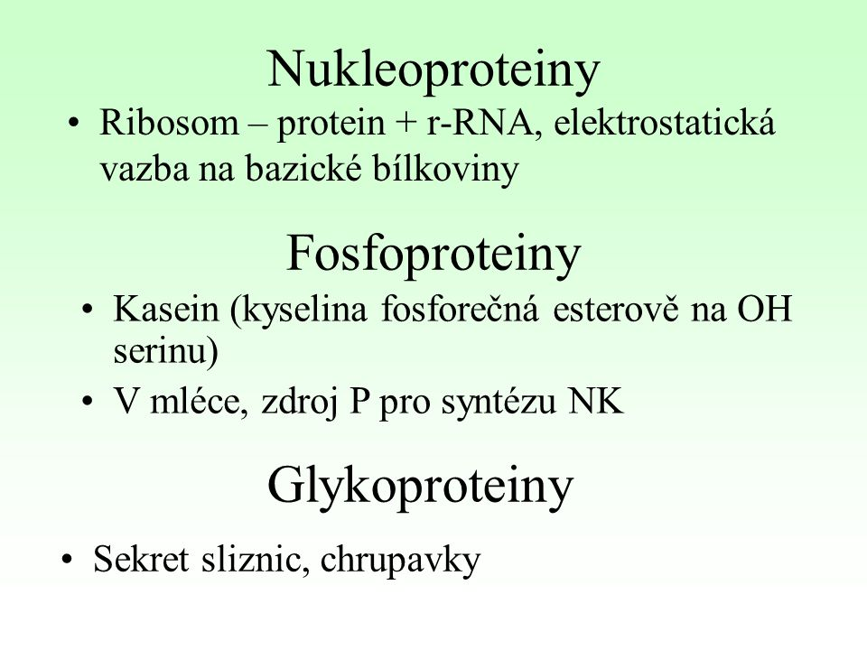 Nukleoproteiny Fosfoproteiny Glykoproteiny