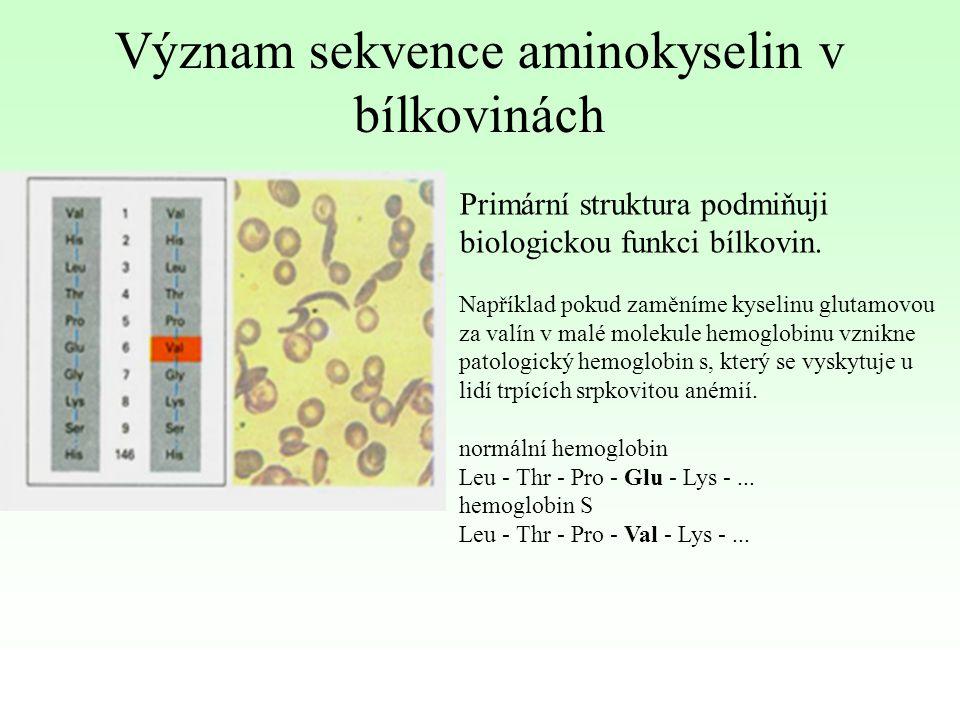 Význam sekvence aminokyselin v bílkovinách
