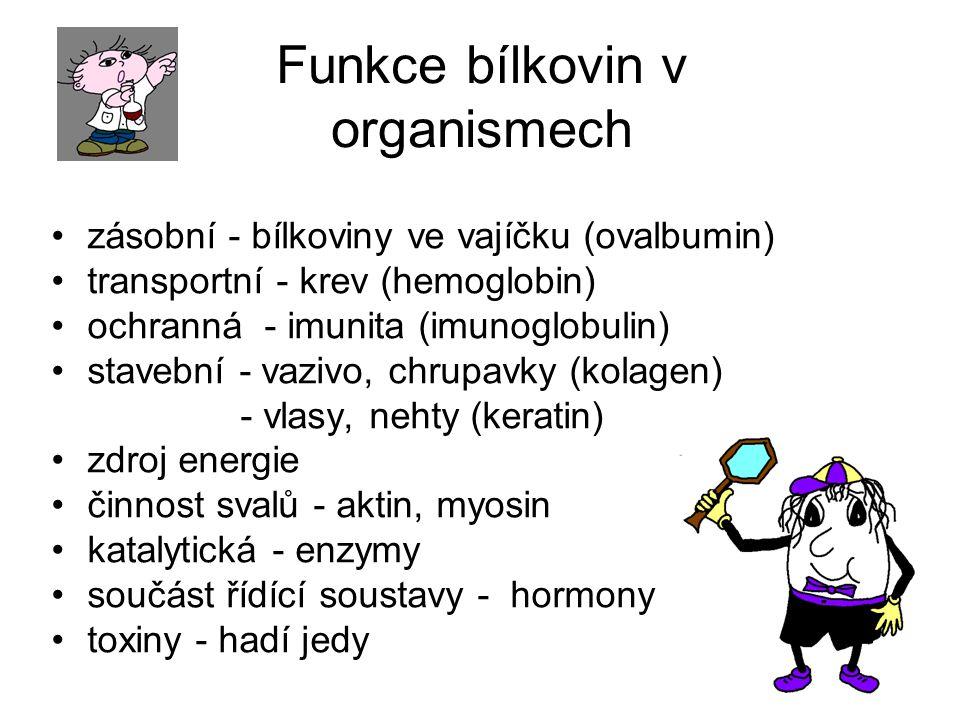 Funkce bílkovin v organismech