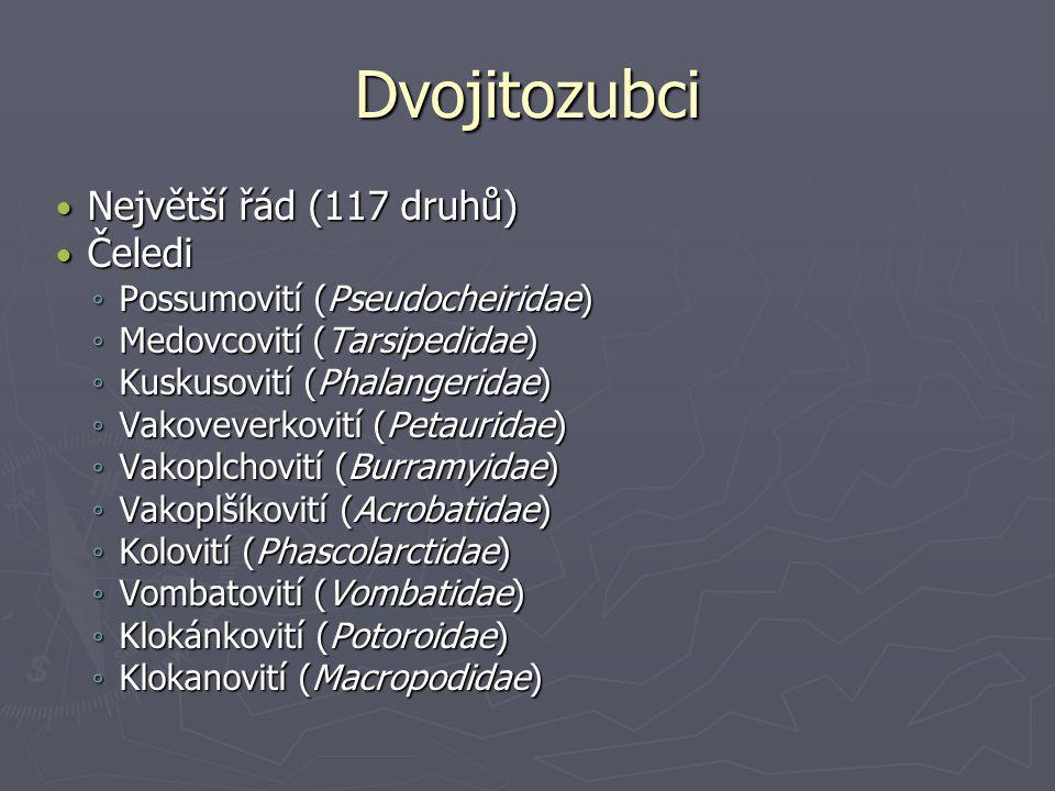Dvojitozubci Největší řád (117 druhů) Čeledi