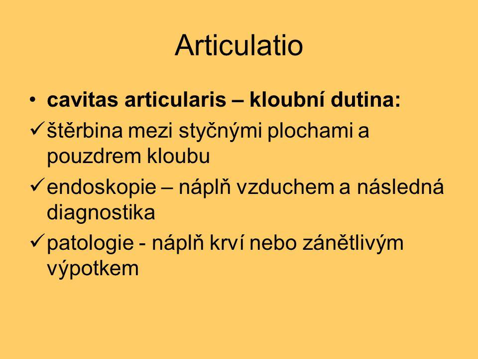 Articulatio cavitas articularis – kloubní dutina: