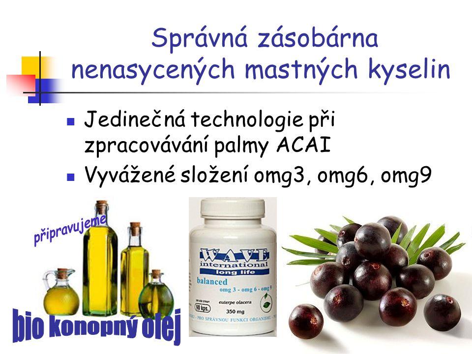 Správná zásobárna nenasycených mastných kyselin