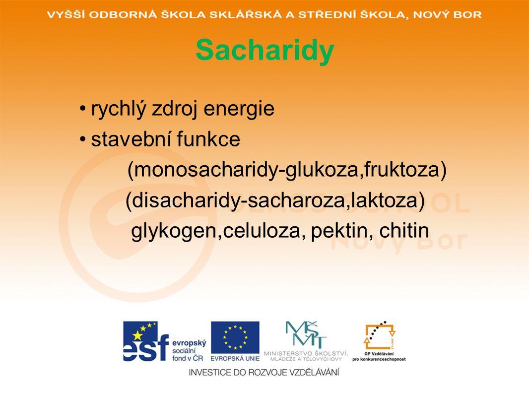 Sacharidy rychlý zdroj energie stavební funkce
