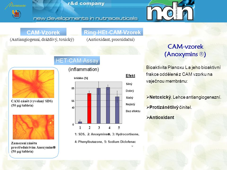 CAM-vzorek (Anoxymins )