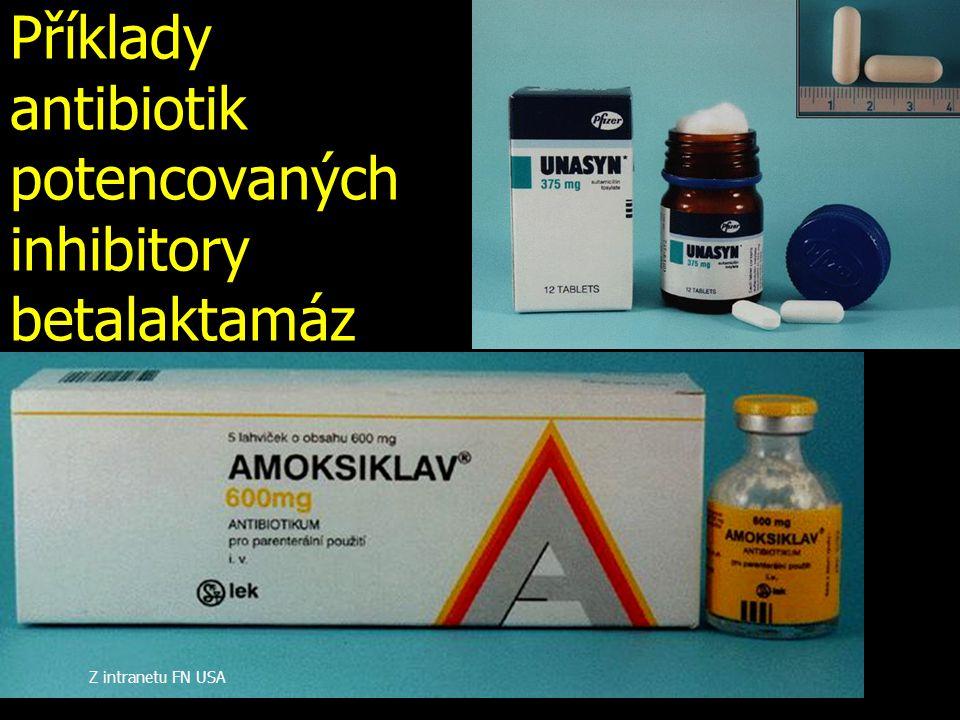 Příklady antibiotik potencovaných inhibitory betalaktamáz
