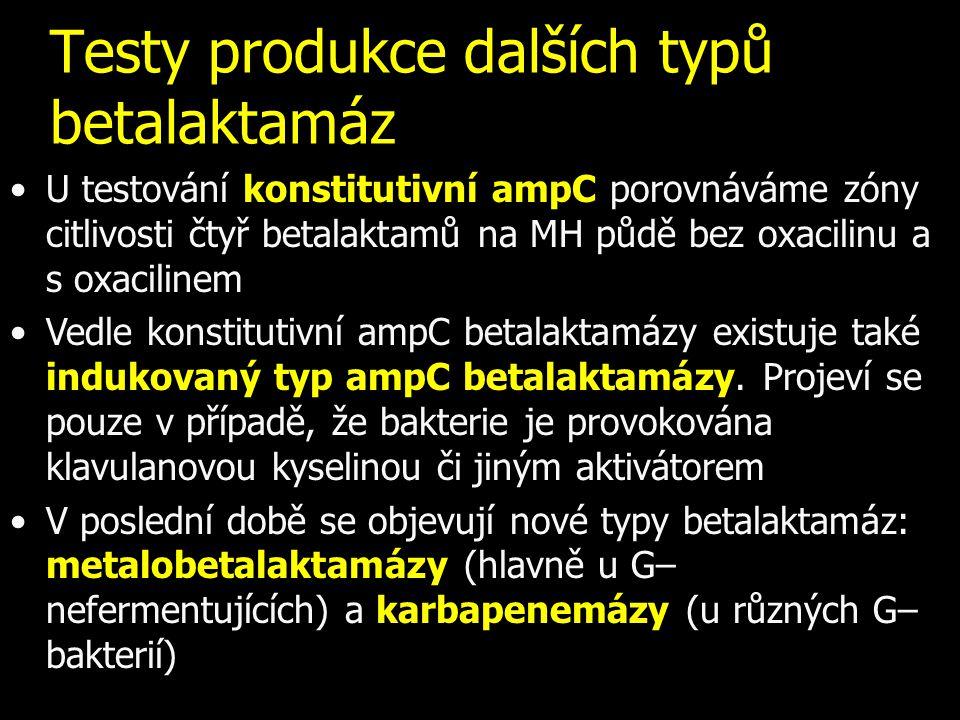 Testy produkce dalších typů betalaktamáz