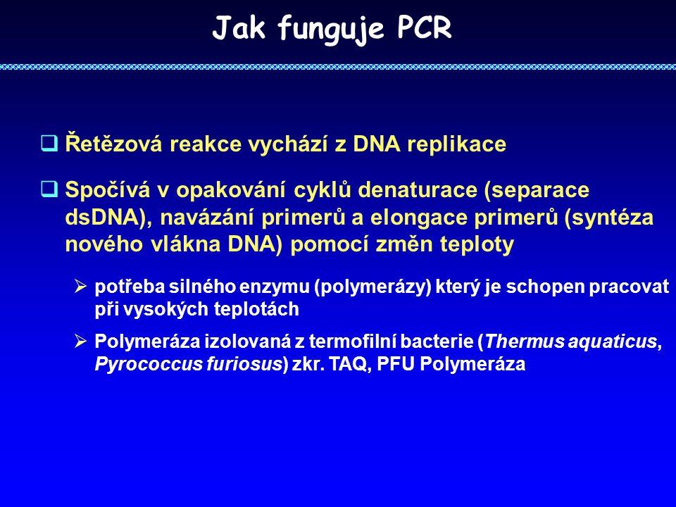 Jak funguje PCR Řetězová reakce vychází z DNA replikace