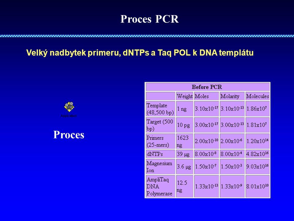 Proces PCR Velký nadbytek primeru, dNTPs a Taq POL k DNA templátu Proces